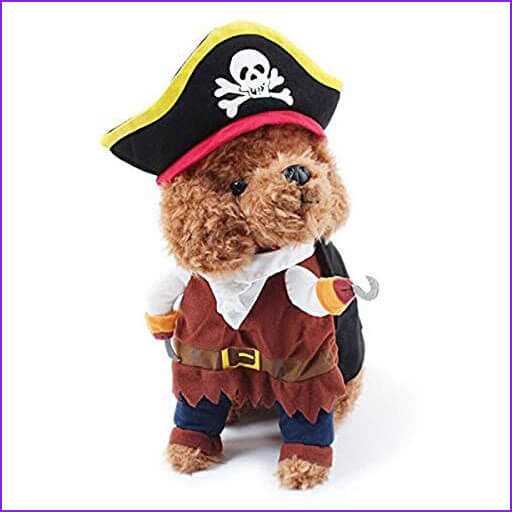 disfraz para perros de pirata