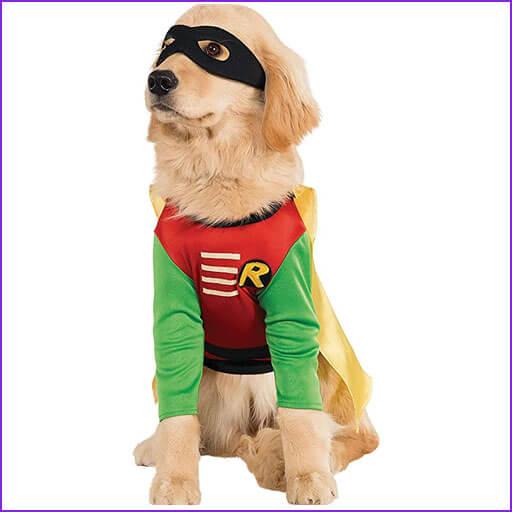 disfraz para perros robin